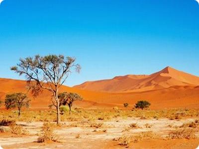 Najveće pustinje na svetu  Kalahari-desert-in-south-africa